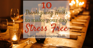 10 Thanksgiving Hacks To Make Your Day Stress Free