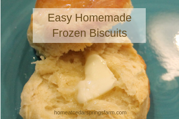 Easy Homemade Frozen Biscuits