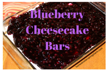 The Best Blueberry Cheesecake Bars