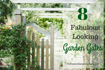 8 Fabulous Looking Garden Gates