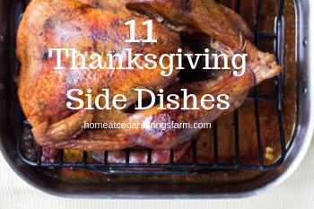 11 Thanksgiving Side Dishes