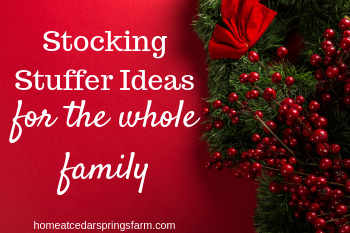 Stocking Stuffer Ideas #stockingstufferideas #stockingsarethebest #stockingsonchristmasmorning