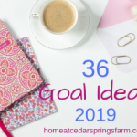 36 Goal Ideas for 2019