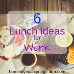 6 Ideas for Packing Healthy and Delicious Lunches for Work