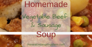 Homemade Vegetable Beef and Sausage Soup