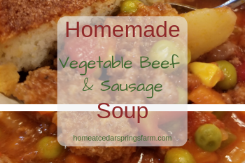 Homemade Vegetable Beef and Sausage Soup