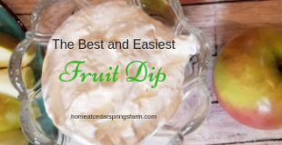 The Best and Easiest Fruit Dip