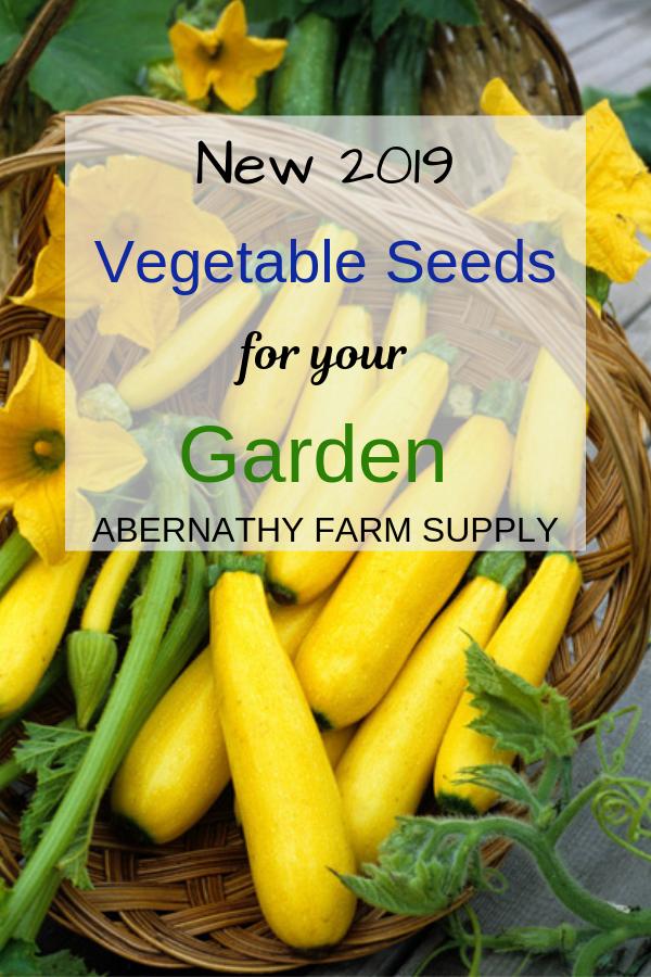 Vegetable Seeds for your Garden #garden #plantagarden #seedsforyourgarden #abernathyfarmsupply #homeatcedarspringsfarm