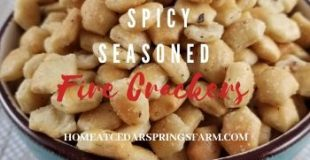 Spicy Seasoned Fire Crackers