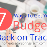 7 Ways To Get Your Budget Back On Track After The Holidays