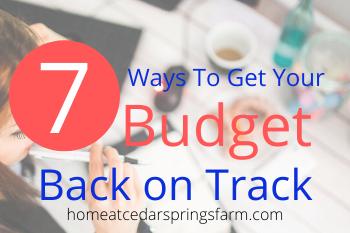 Budget Back on Track