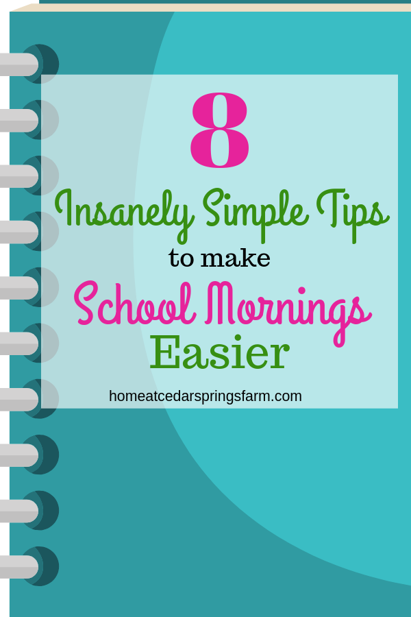 8 Insanely Simple Tips to make School Mornings Easier
