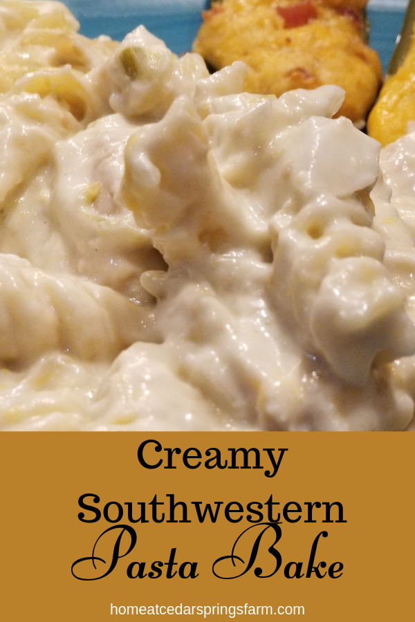 Creamy Southwestern Pasta Bake