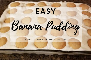 Easy Banana Pudding
