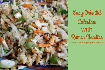 Easy Oriental Coleslaw with Ramen Noodles