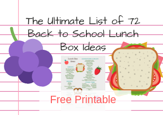 The Ultimate List of Lunch Box Ideas