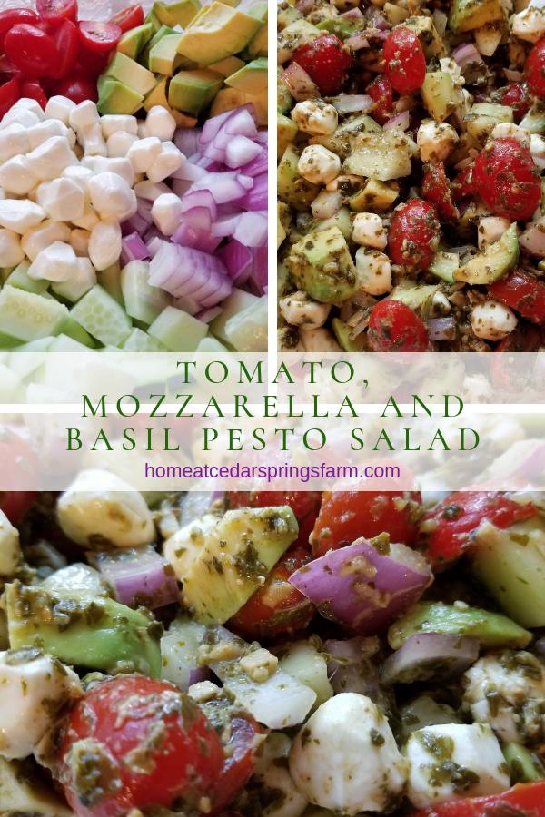 Tomato, Mozzarella and Basil Peso Salad