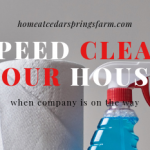Speed Clean Your House In 30 Minutes