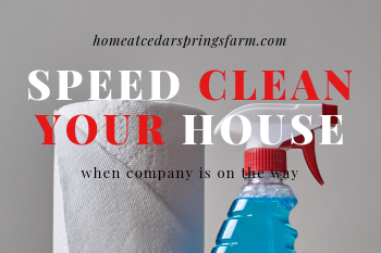 Speed Clean Your House