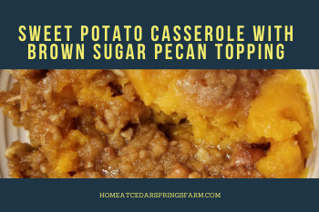Sweet Potato Casserole with Brown Sugar Pecan Topping