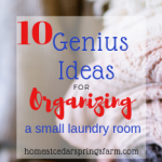 10 Genius Ideas for Organizing a Small Laundry Room